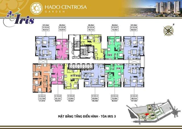 Mat-bang-iris-3-ha-do-centrosa-garden