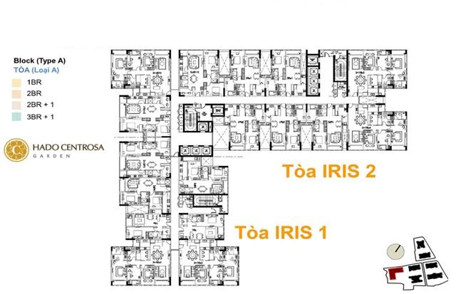 Tòa tháp iris 1