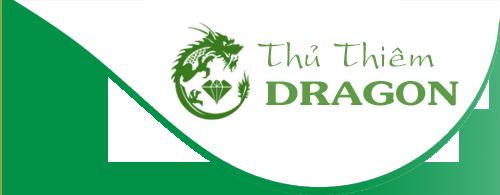 du an thu thiem dragon