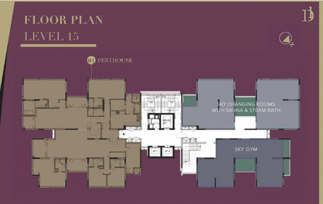thiết kế mặt bằng căn hộ D1 Mension Q1 chỉ có 4 căn / sàn