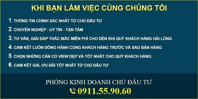 chon-mua-biet-thu-phu-my-van-phat-hung-1