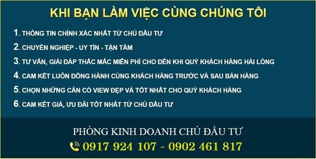 chon-mua-biet-thu-phu-my-van-phat-hung